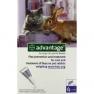Bayer Advantage 80 spot on macskáknak, nyulaknak 1db