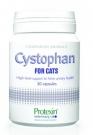 Protexin Cystophan kapszula macskáknak, 30db