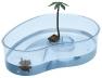 Arricot teknős medence