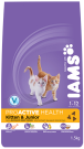 Iams Kitten & Junior Rich in Chicken 300g