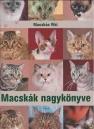 Macskák nagykönyve (Macskás Viki)