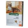 Bayer Advantage 40 spot on macskáknak, nyulaknak 1db