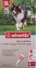 Bayer Advantix spot on 10-25kg közötti kutyáknak