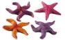 Blu 9160 nagy tengeri csillag